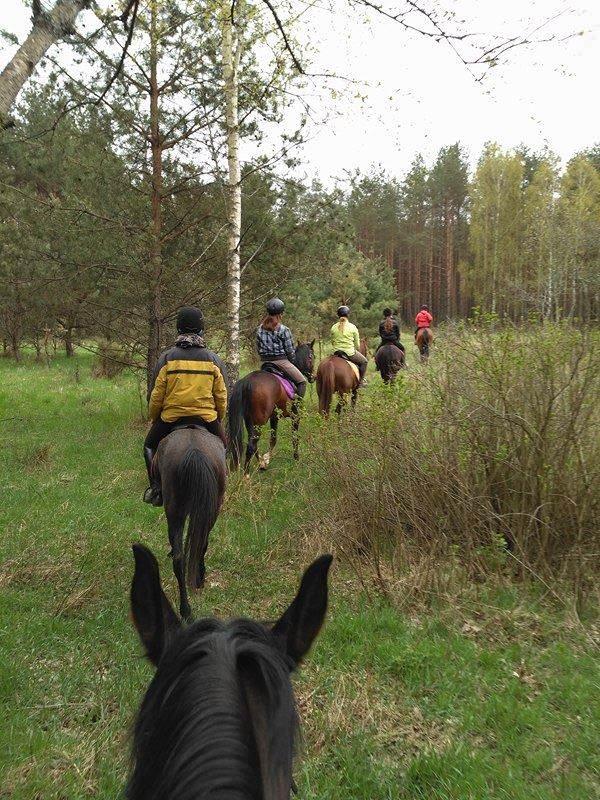 Weekend majowy w Pieńkach i szkolenie jeździeckie #3