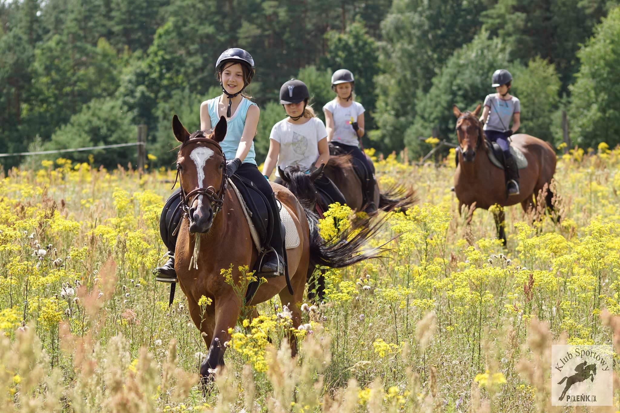 Szkolenie jeździeckie z Hubertusem 02-05.11.2017r.