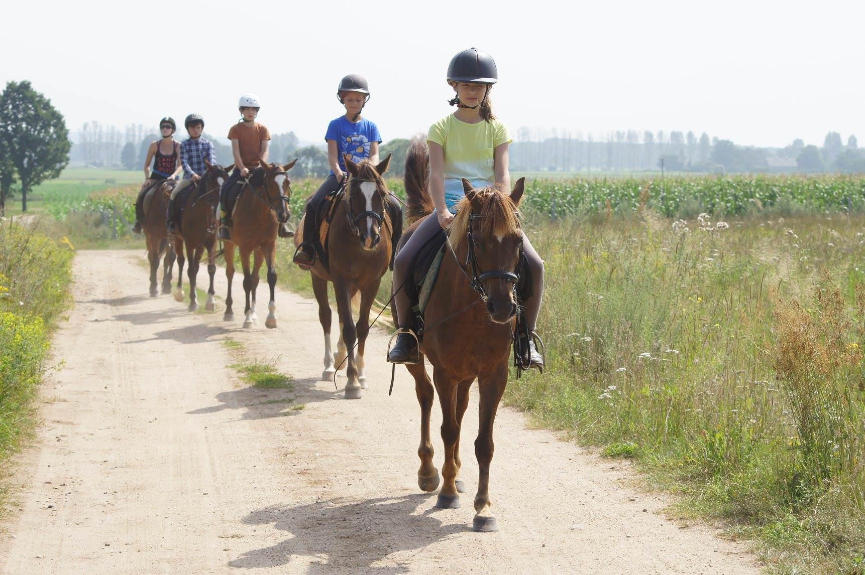 Szkolenie jeździeckie #1 – 06-08.04.2018r.