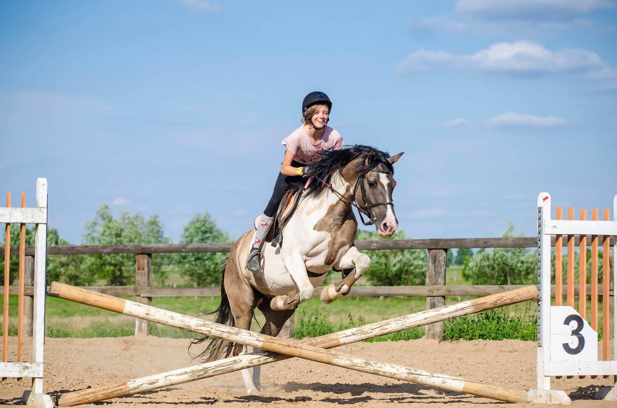 Szkolenie jeździeckie #5 – 12-14.10.2018r.