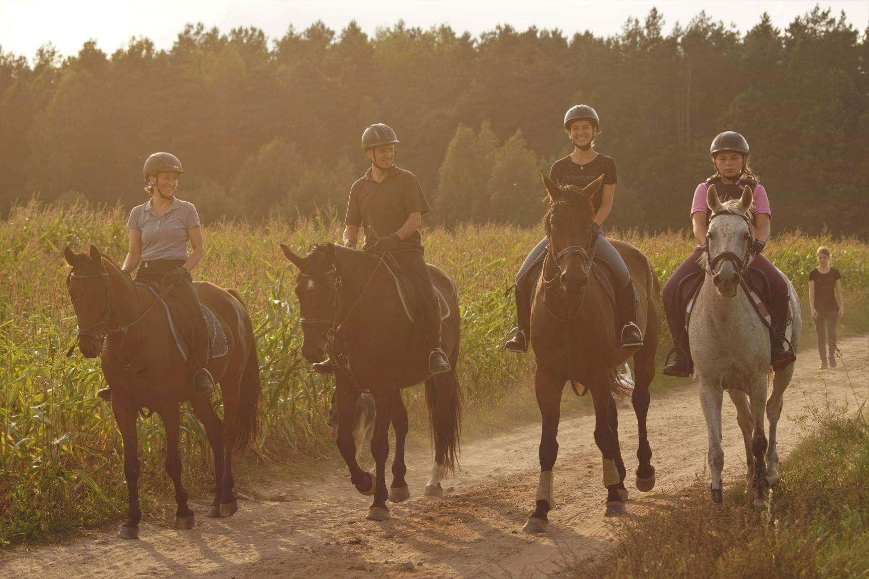 Obóz jeździecki dla dorosłych