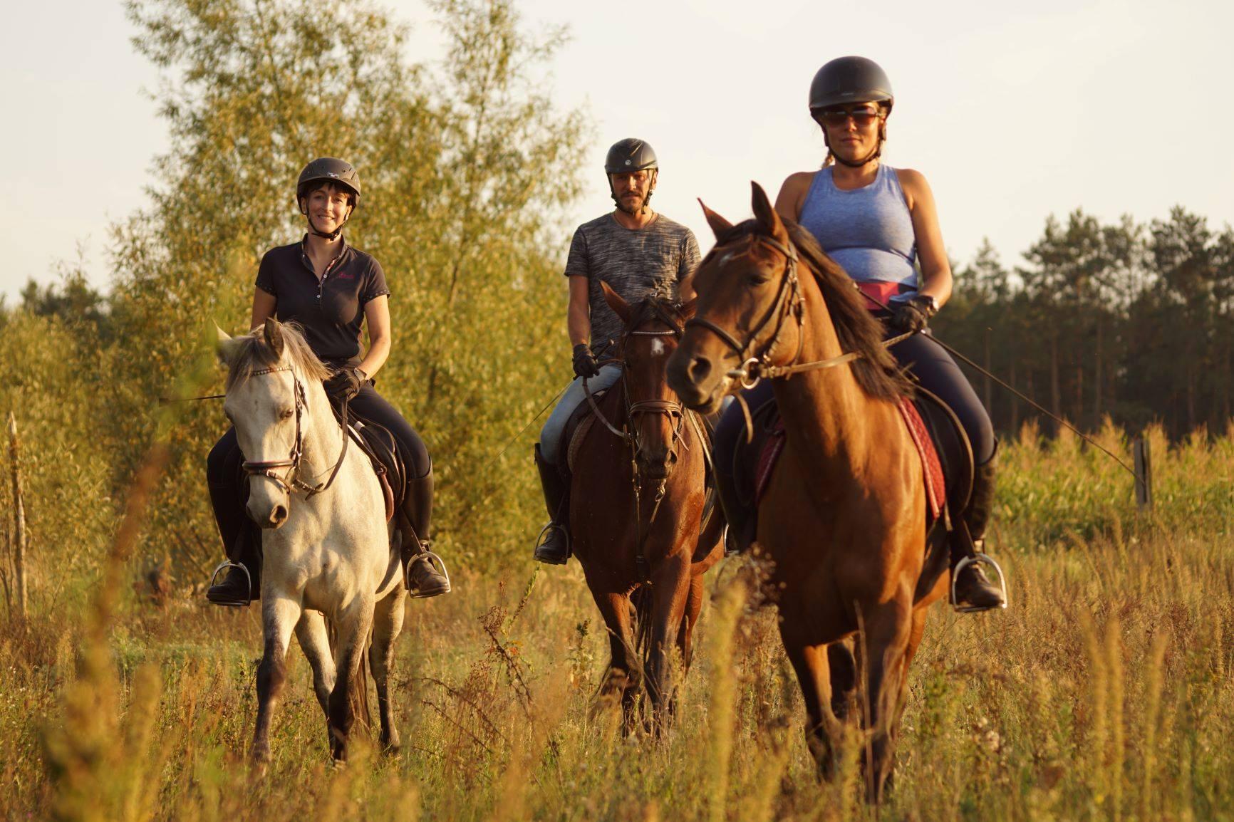 Obóz jeździecki dla dorosłych 2020